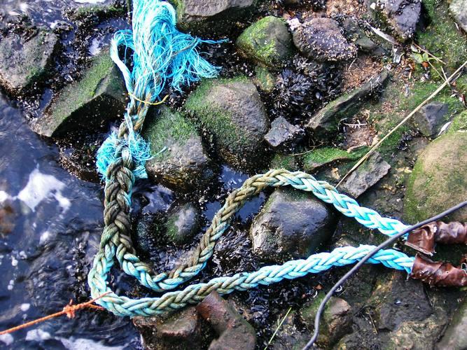 Steine, blaues Tau, Wasser