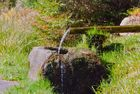 Steine erzählen Geschichten (Erlebnistour) - Der Eselsbrunnen-