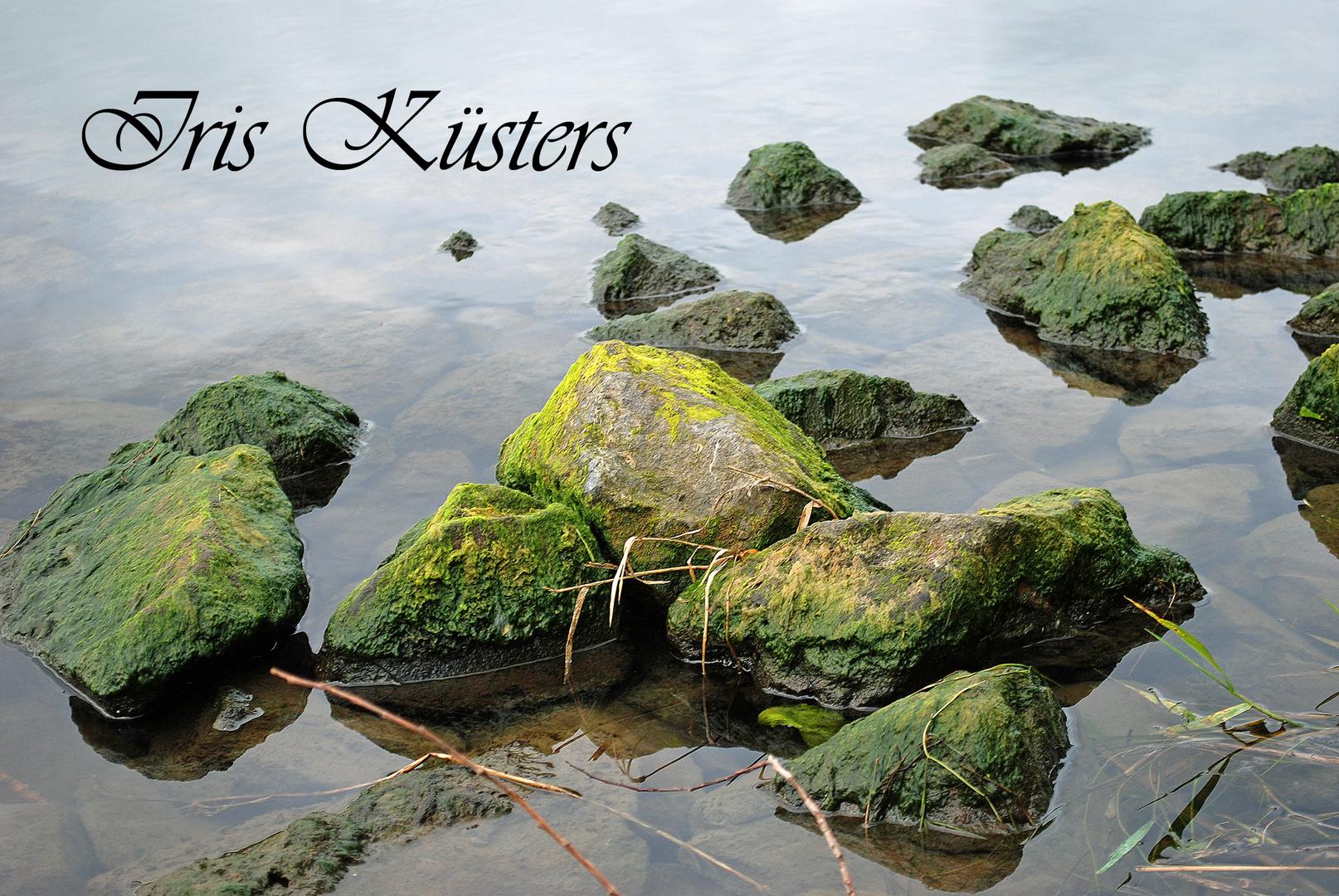 Steine in der Weser
