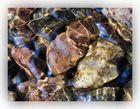 Steine unter Wasser