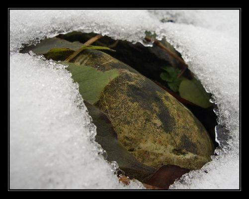 Steinei im Eisnest