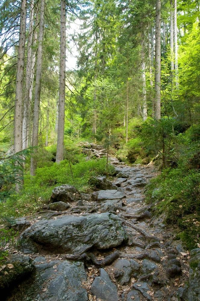 Steinerner Weg