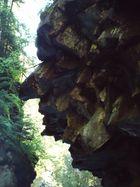 Steingesicht in der Roflaschlucht