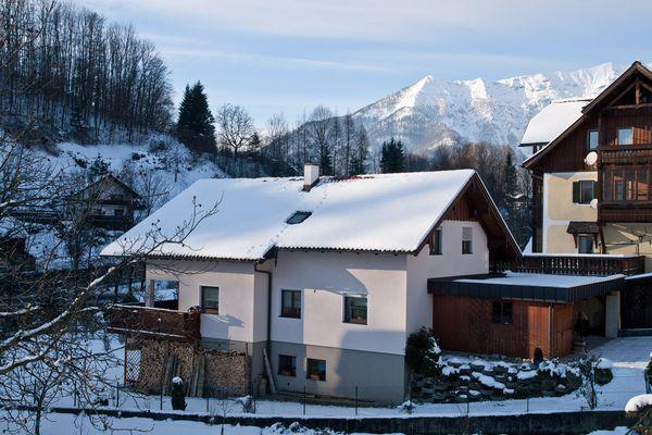 Steinmarderspuren am Dach