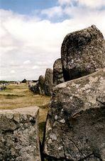 Steinreihe bei Carnac