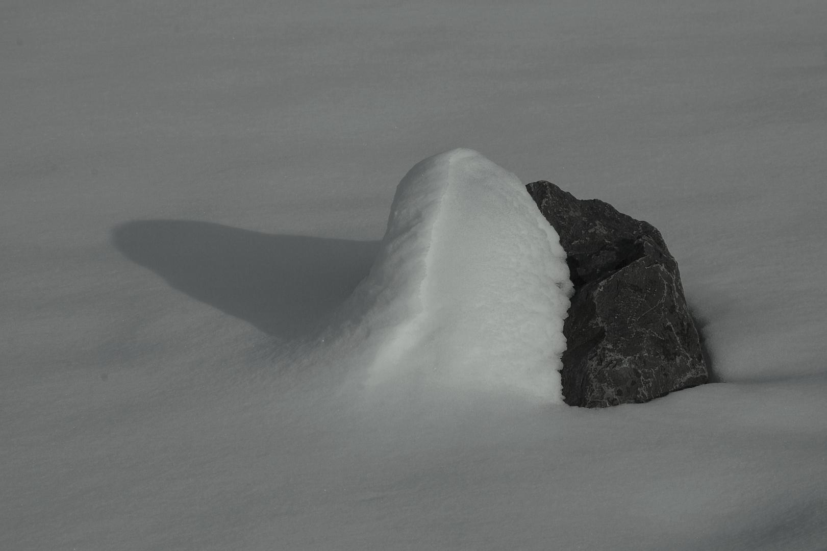 Steinschneeschatten