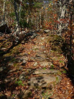 steintreppe, indian summer, maine (usa)
