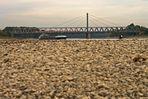 Steinwüste am Rhein