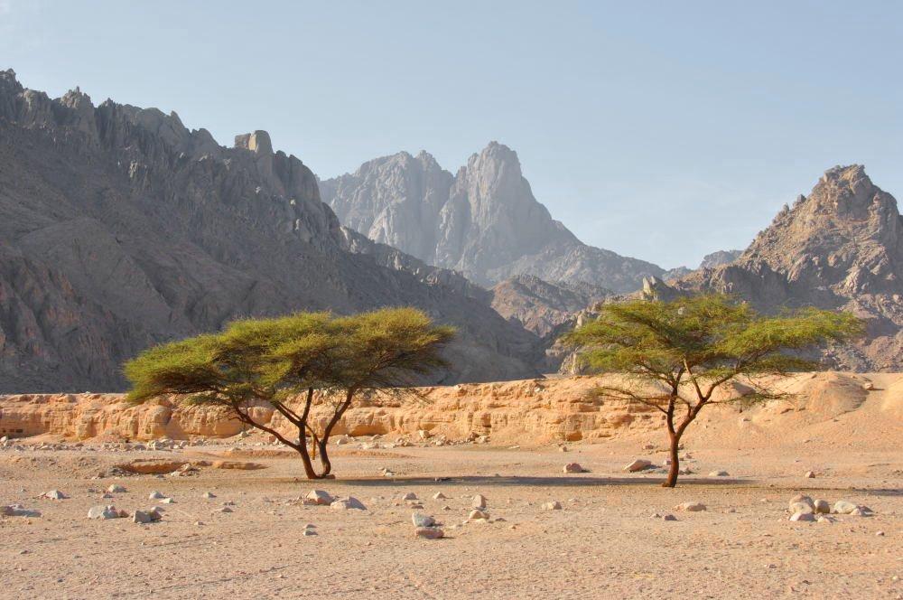 Berge Und Meer ägypten