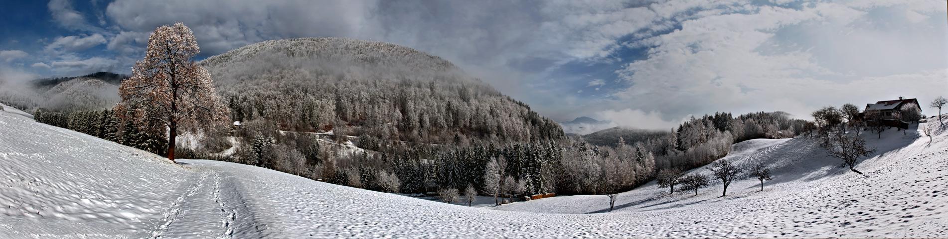 Steirische Winterlandschaft (Kehr bei Graz)