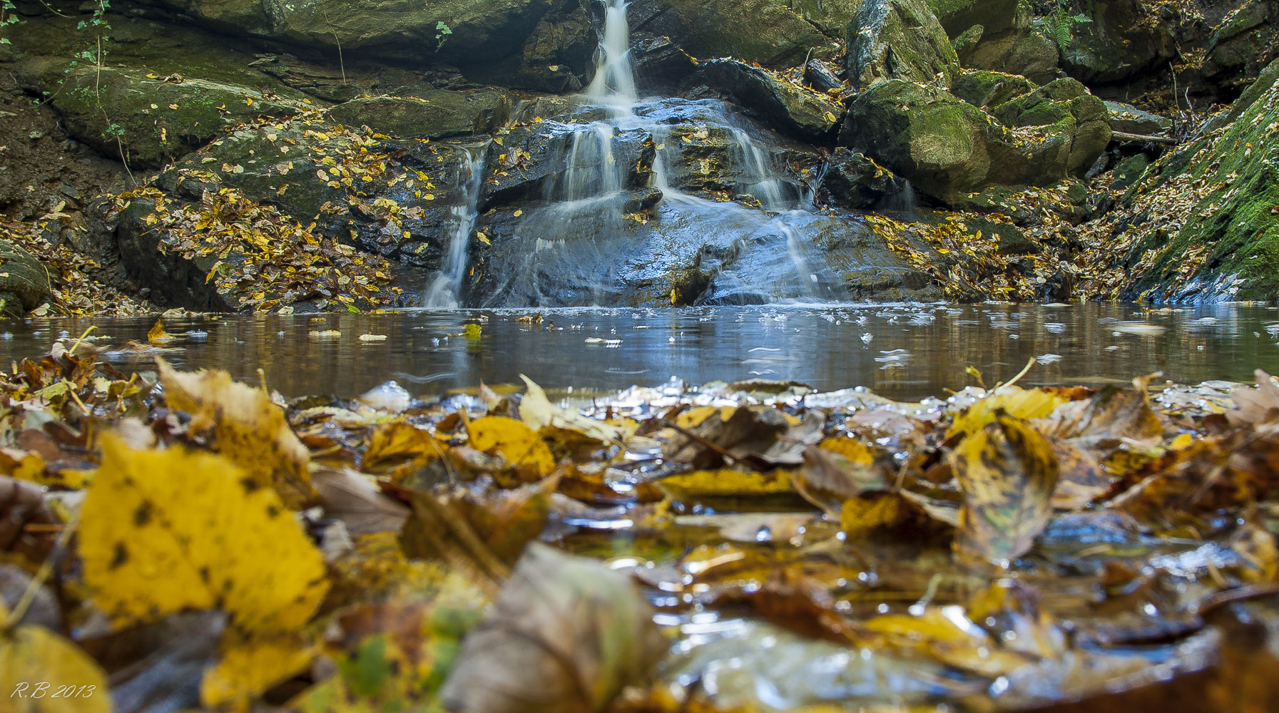 Steirischer Herbst