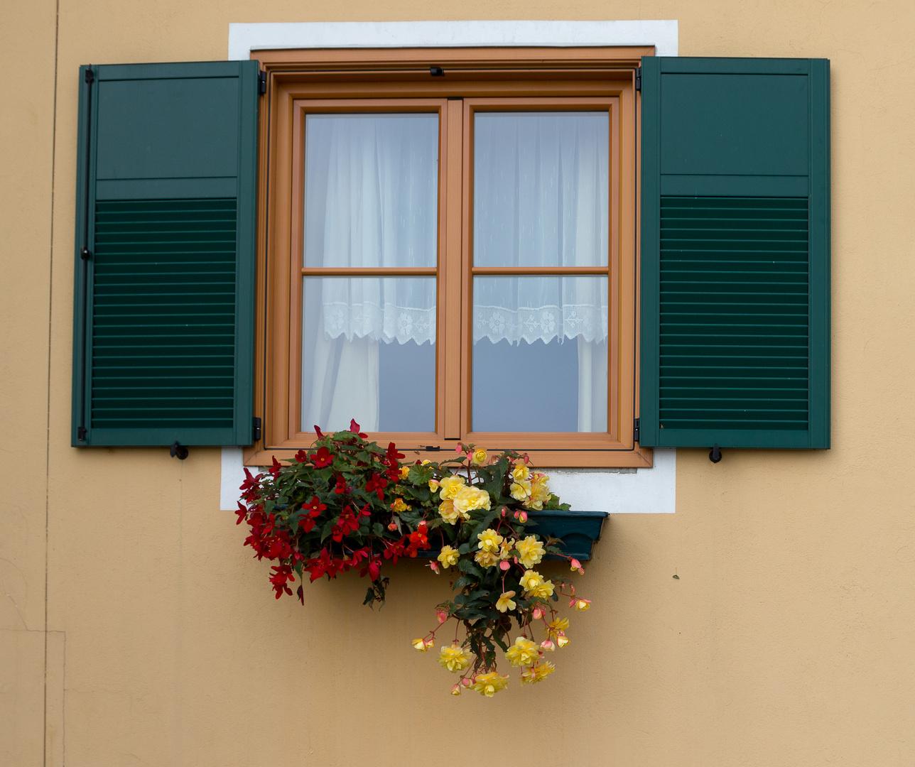 Steirisches Fenster