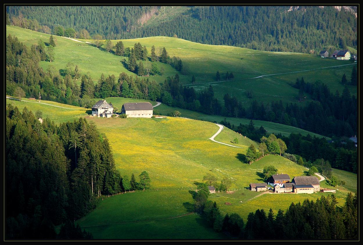 Steirisches Landleben