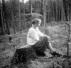 Stelldichein im Wald bei Gmunden