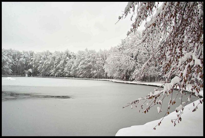 Stempflesee im Winter