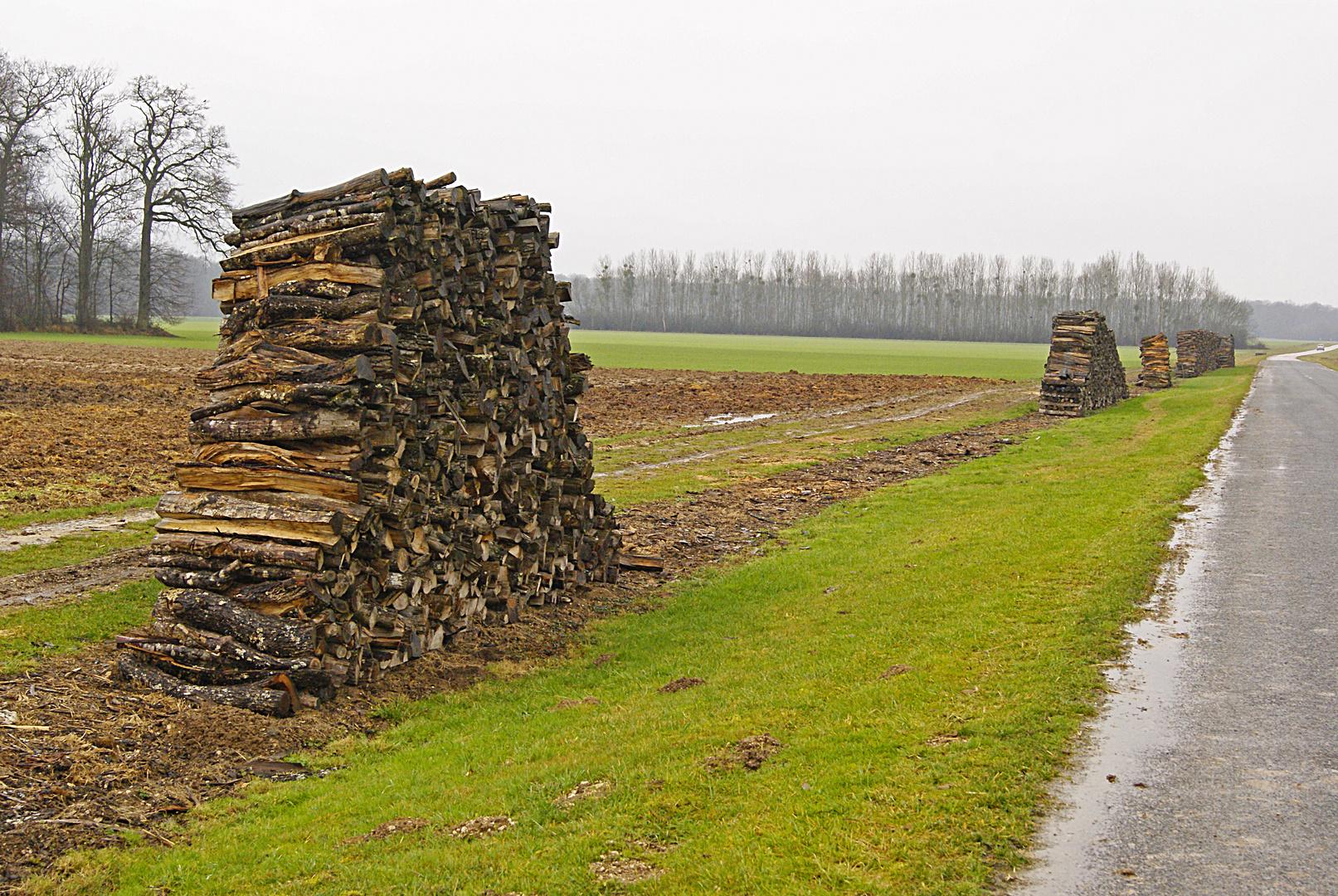 stères de bois, parc naturel de la forêt d'orient, Aube