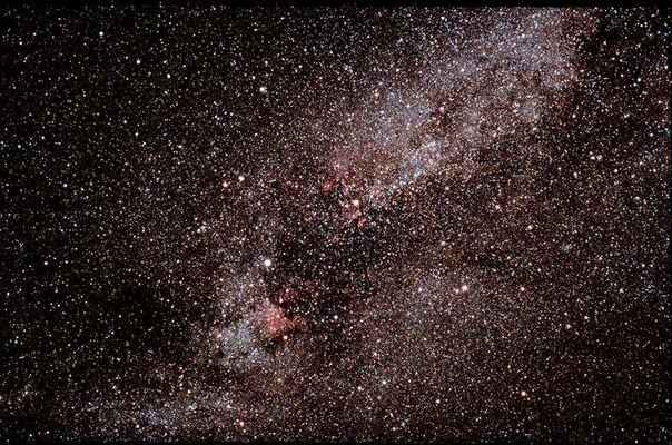 Sternbild Schwan schwebt vor der Milchstraße