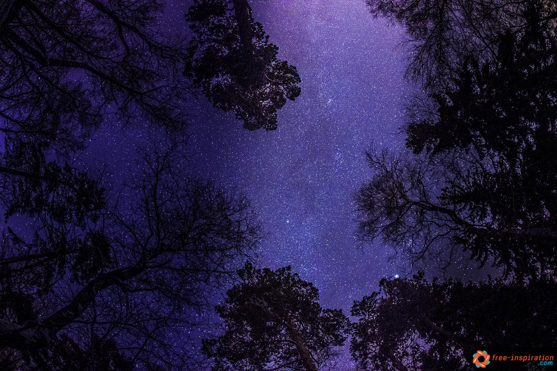Sterne überm Pfaffenstein