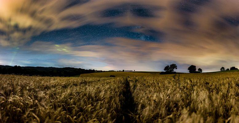Sternen Feld