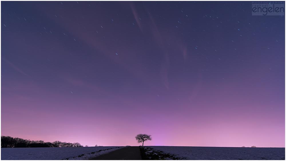 Sternenhimmel im Winter