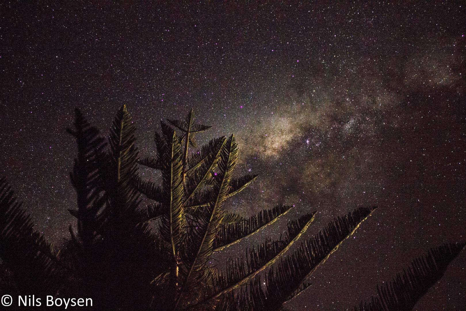 Sternenhimmel in New Zealand