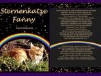 """Sternenkatze Fanny"""