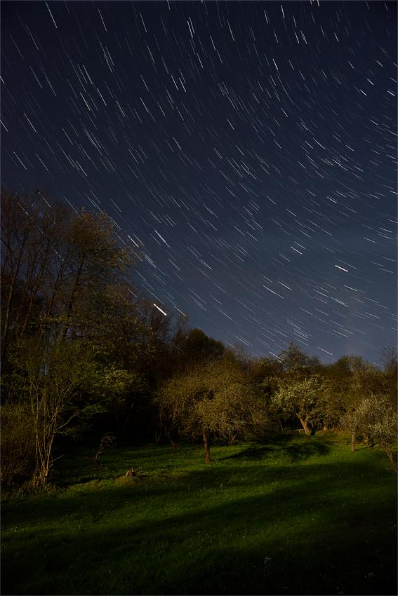 Sternenregen im Mondlicht