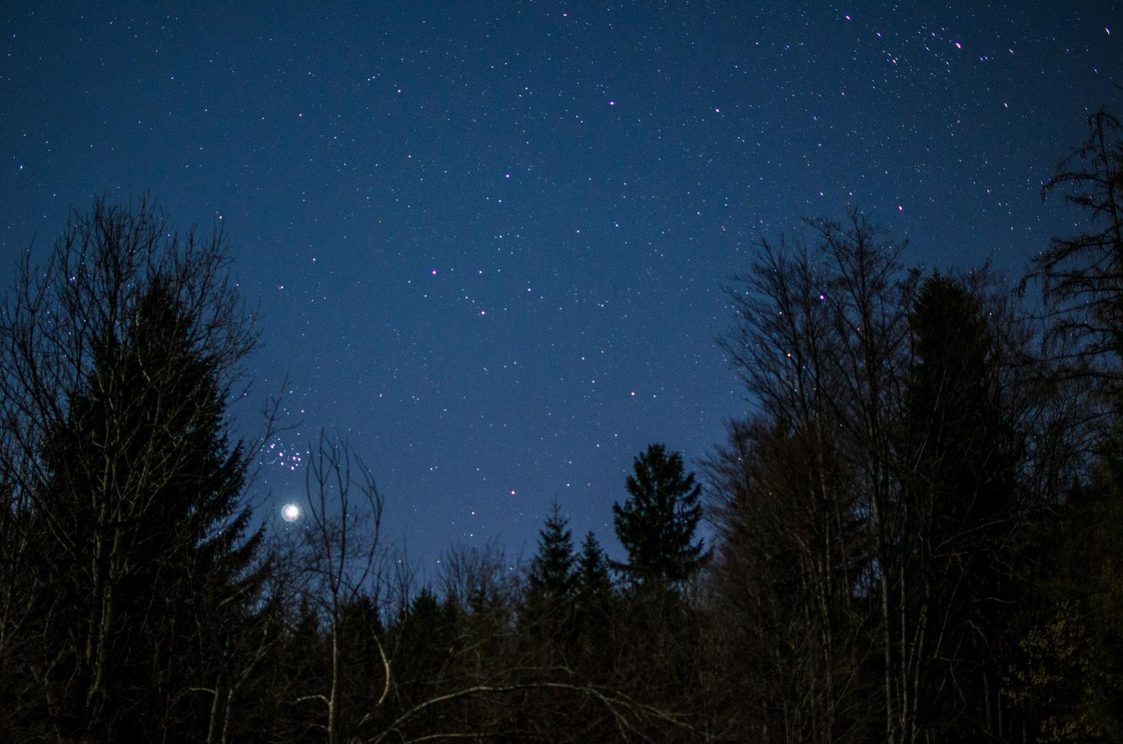 Sternenwelt