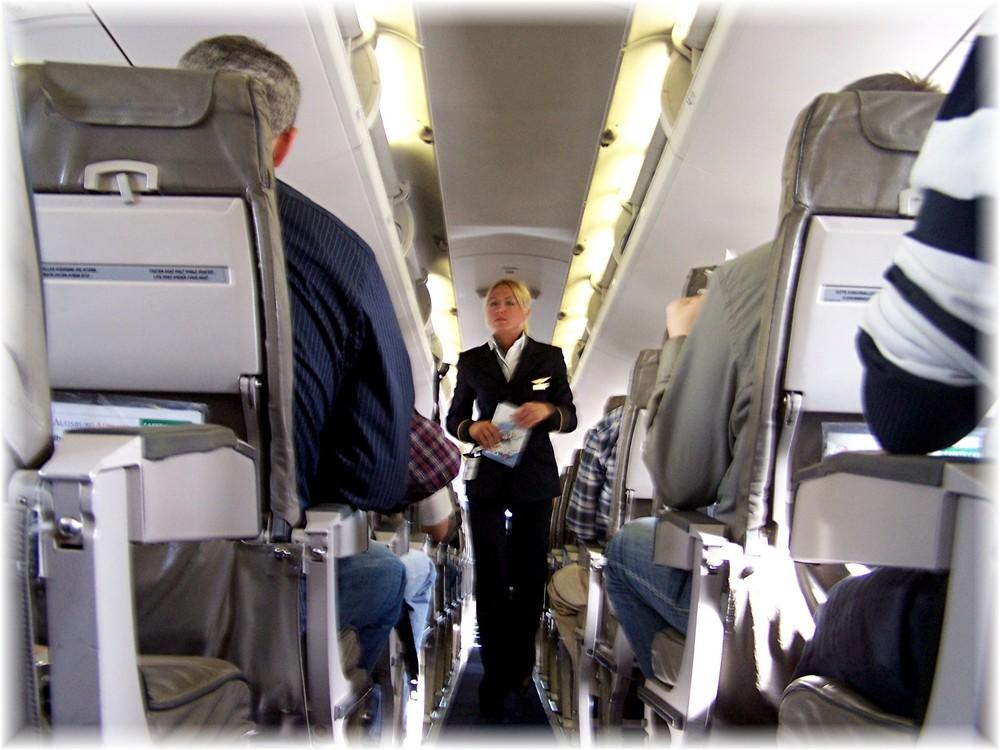 Stewardes........