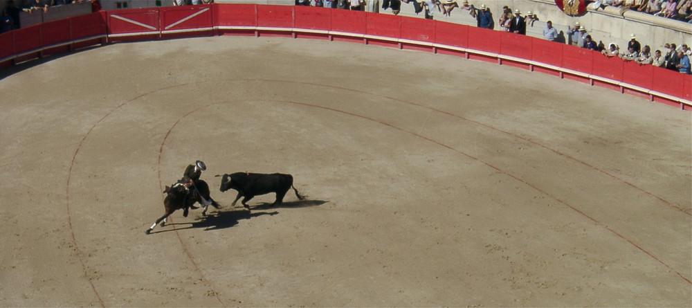 Stierkampf in der Provence