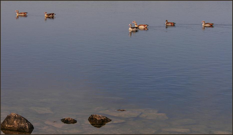 Still ruht der See....noch !!!!