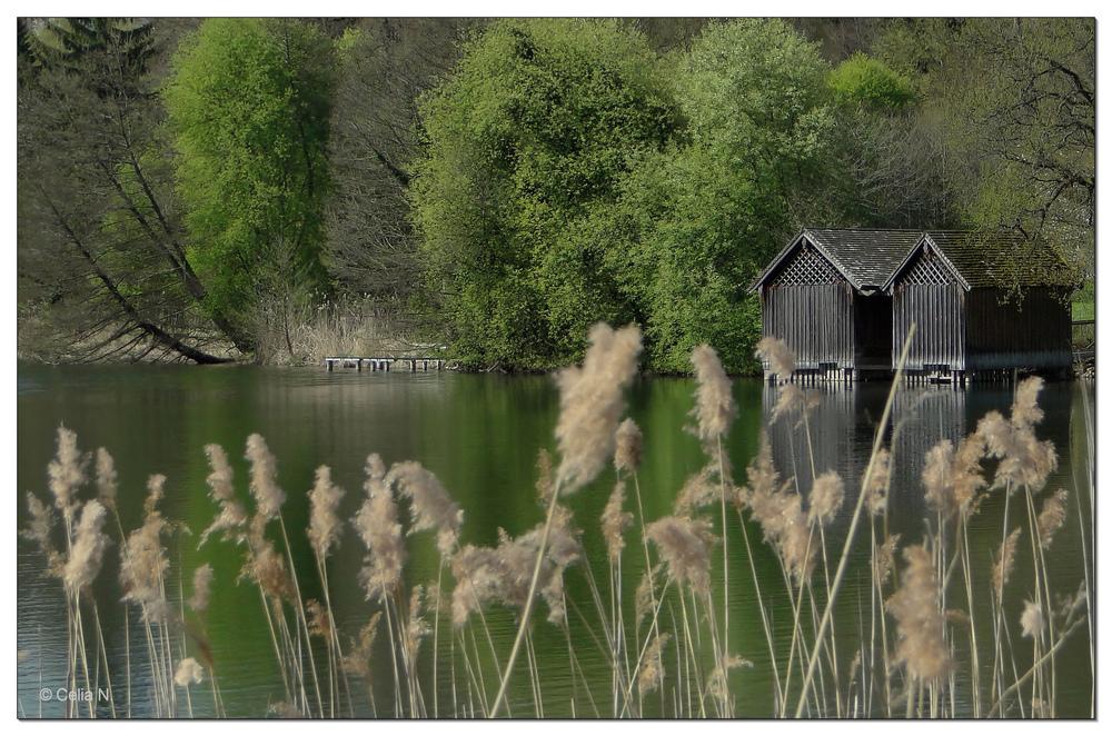 Stille am Höglwörther See