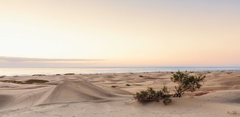 Stille am Meer - Kanaren625