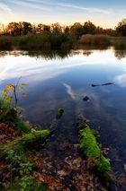 Stille am Teich