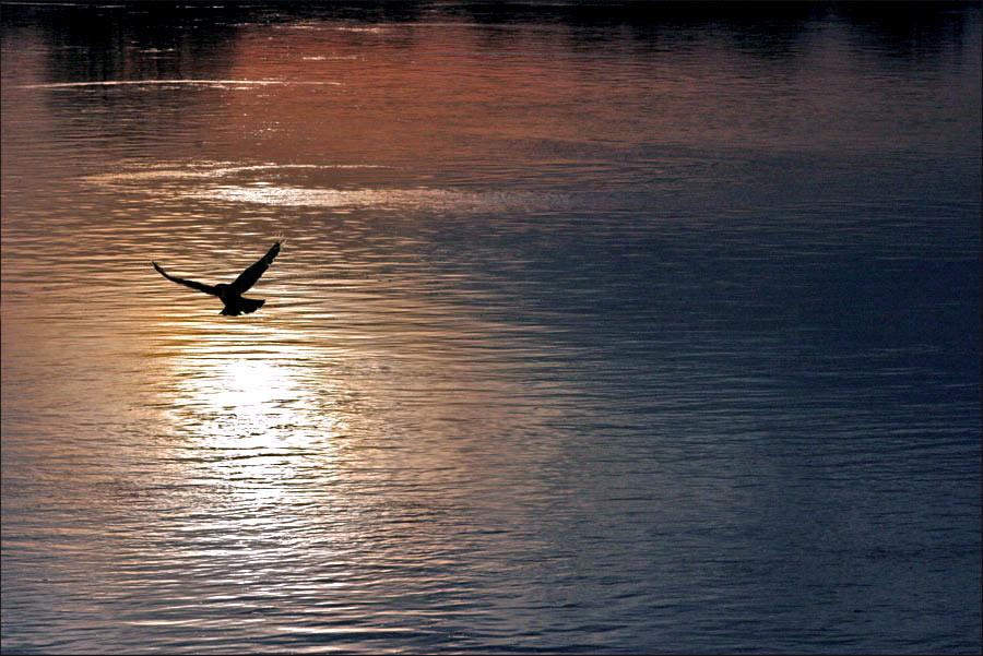 Stille am Wasser...