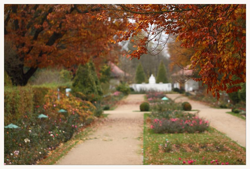 Stille im Rosengarten 2