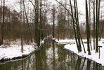 Stille im Spreewald....