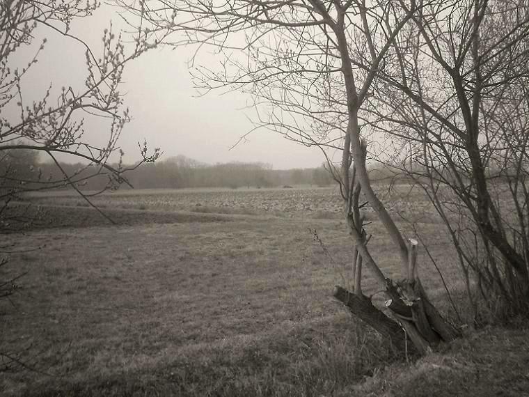 Stille im Winter