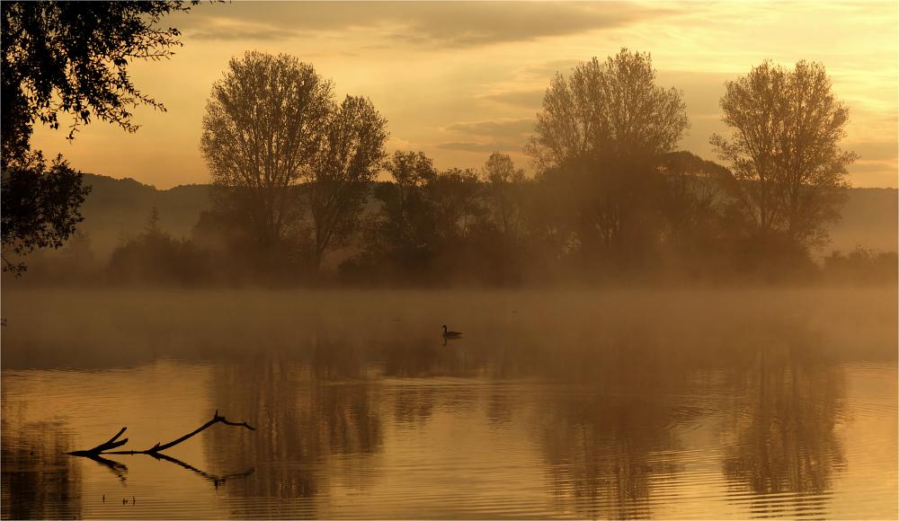 Stille Momente am Morgen