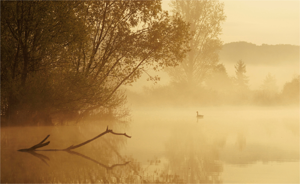 Stille Momente am Morgen II