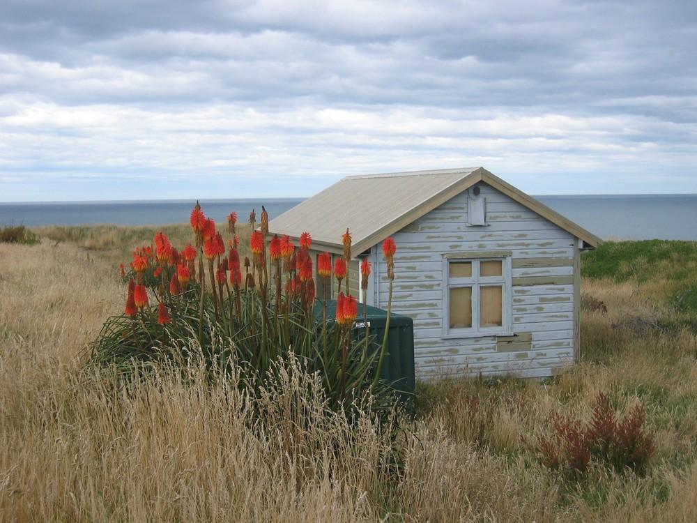 Stille Momente in Neuseeland
