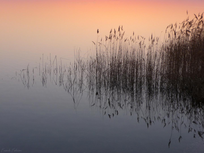 Stille Natur