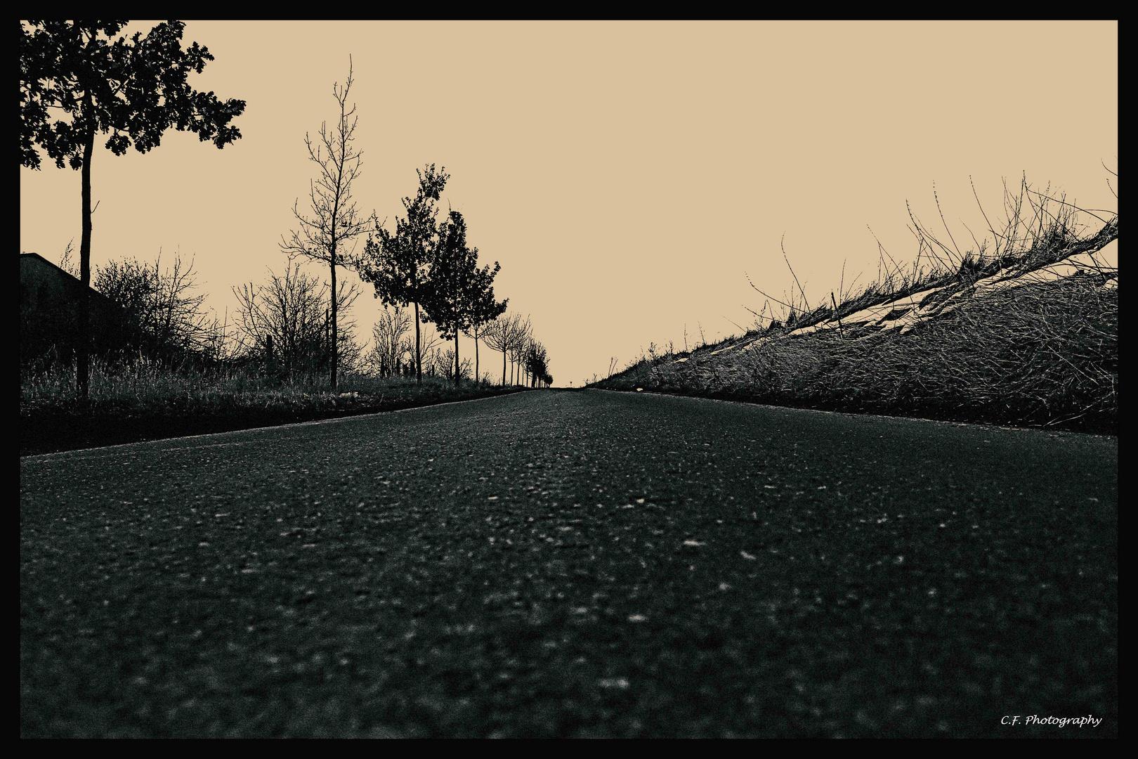 stille Tage in Asphalt