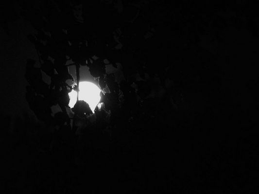 Stille war´s, der Mond schien helle....