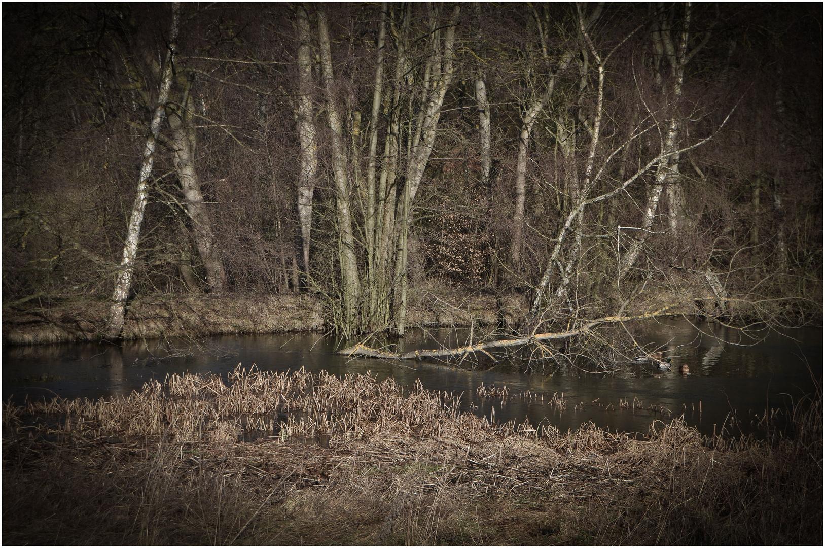 stille Wasser...