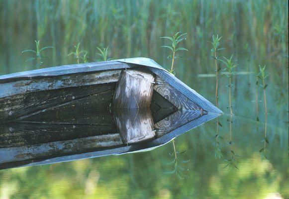 Stille Wasser.....
