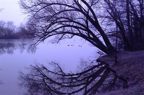 stille Wasser sind tief...