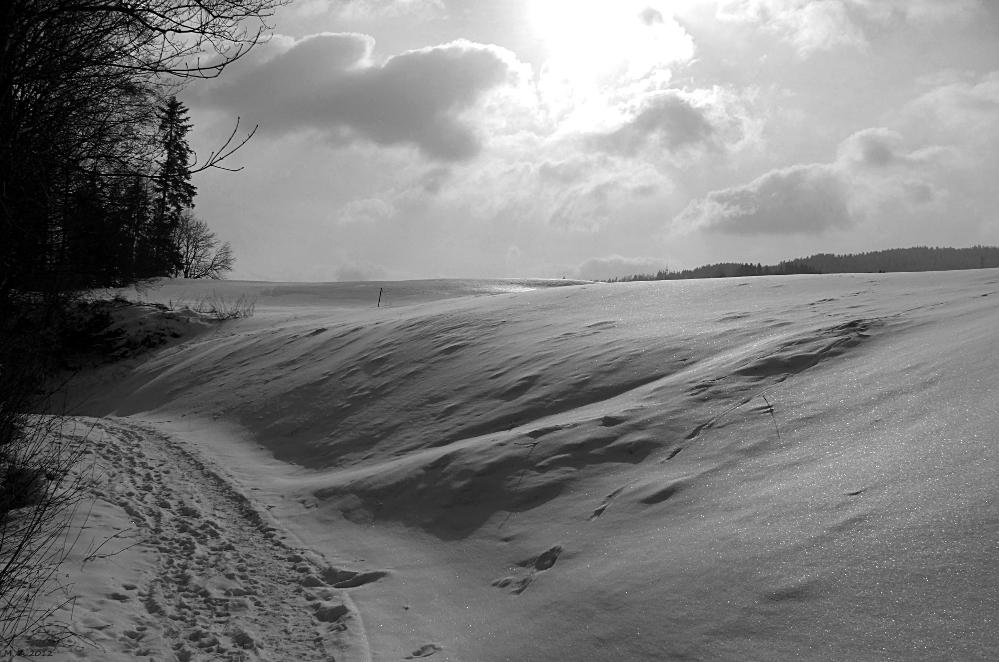 Stille Winterlandschaft