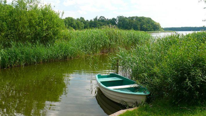 Stilleben am Dobbertiner See (Mecklenburgische Seenplatte)