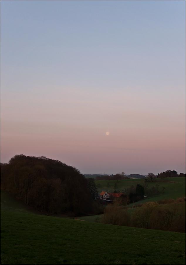 Stiller Morgen im Bergischen Land